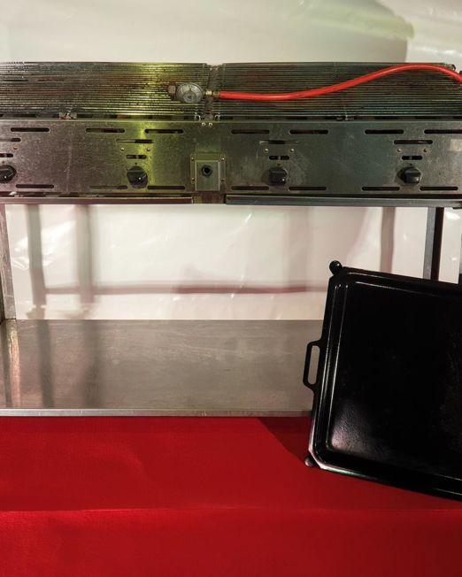 Festcompany-grill-einsatz